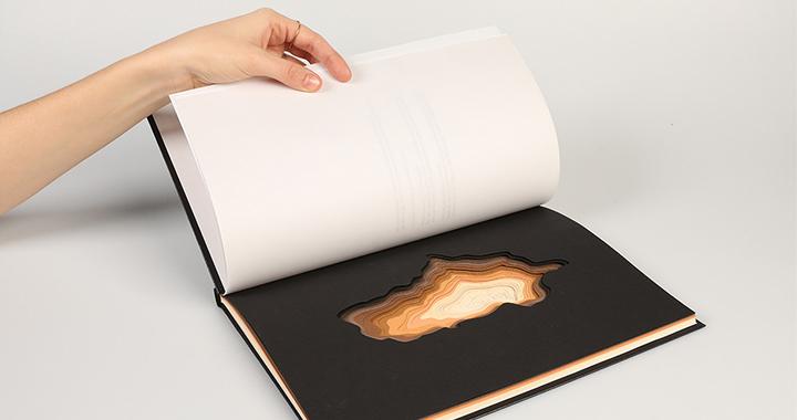 Proyecto de un libro que representa la madera del CSP en Brand Storytelling hecho con adobe